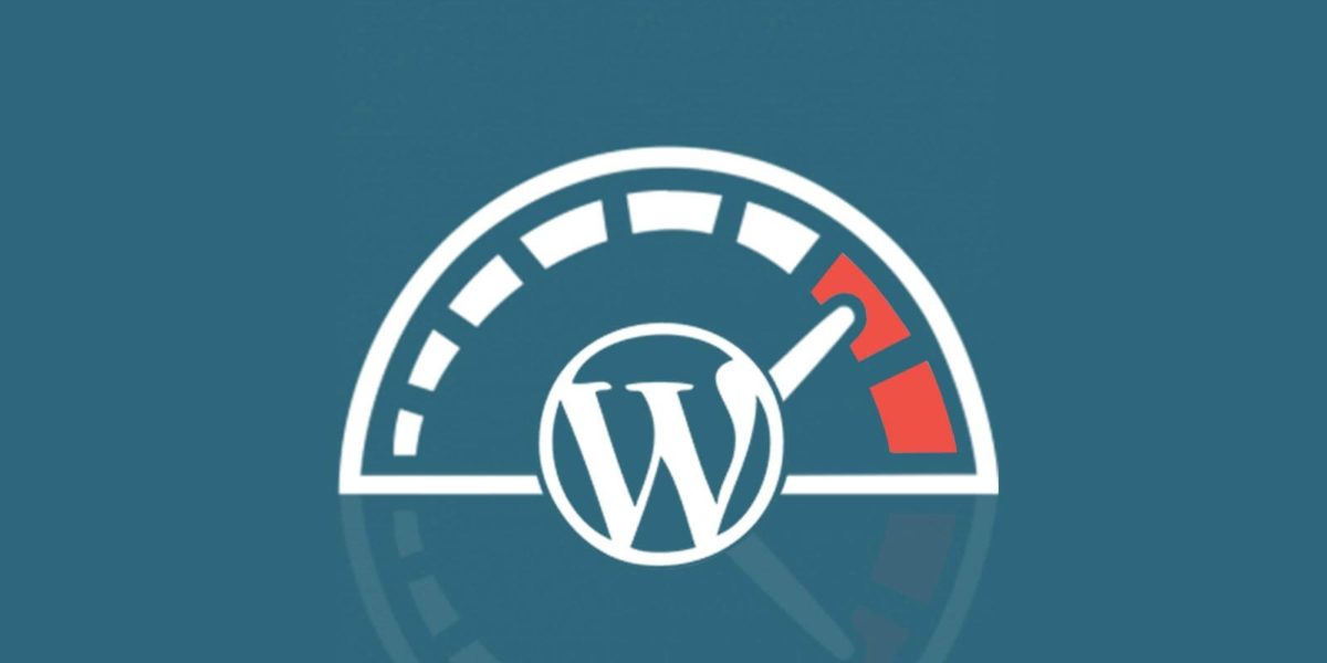 optimizacion wordpress guia